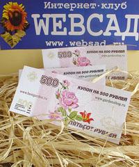 Сертификаты от магазина МИР УВЛЕЧЕНИЙ