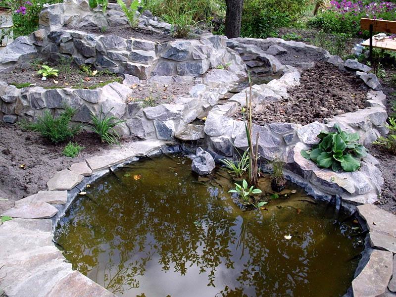 Как правильно оформить береговую линию водоема Сажаем Сад